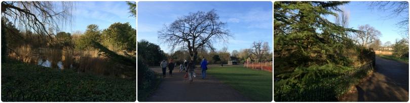 Beautiful Park - Beautiful Weather